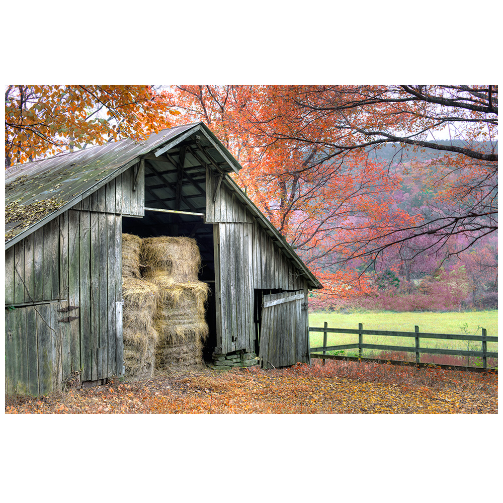 An Old Barn With Hay Surrounded By Vibrant Fall Colors ...